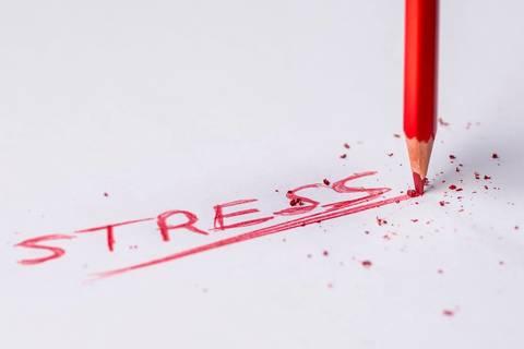 Stress, Relazioni e Salute (1° parte)