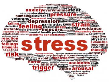 Stress, relazioni e salute (3° parte)